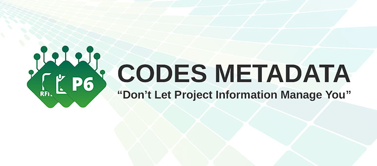 Codes Metadata in Construction Viz